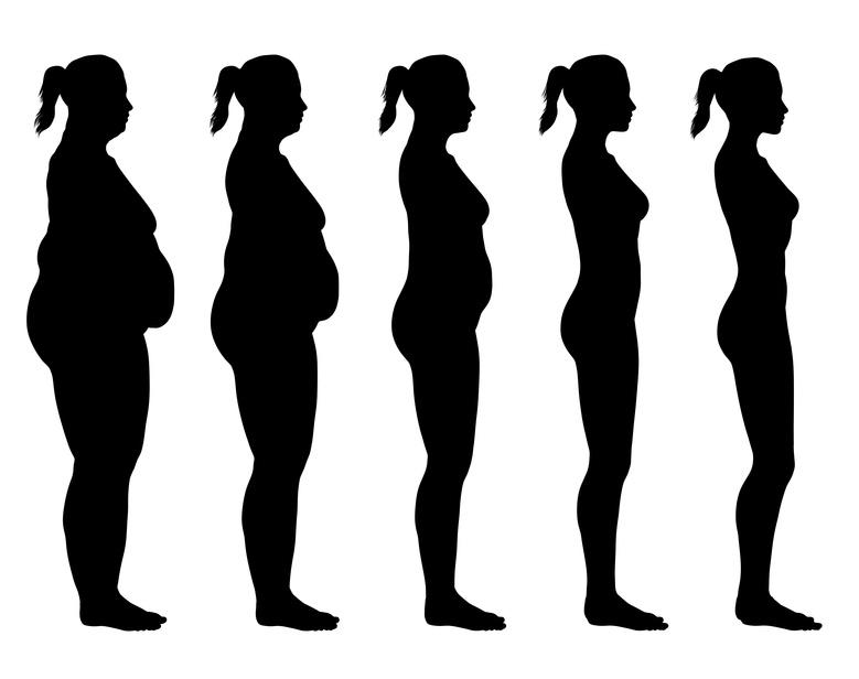 Obésité et sensibilité à l'insuline : la piste de la lipolyse