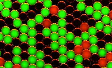 cp_biopuce_20052011 goutellettes