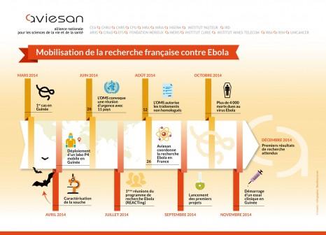 infographie-aviesan-ebola copyright Inserm