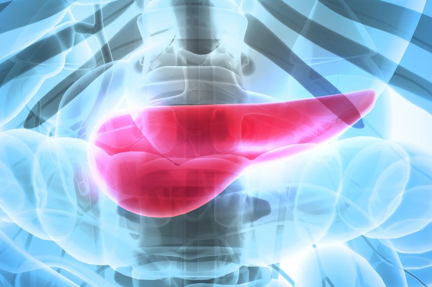 Cancer du pancréas : une étude « multiomique » identifie deux sous ...